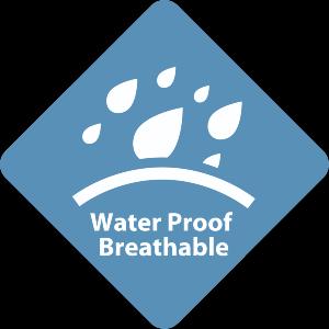Water P
